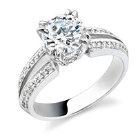 Stardust Split Shank Engagement Ring