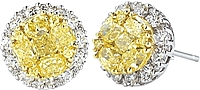 Gregg Ruth 18k White Gold Yellow and White Diamond Earrings