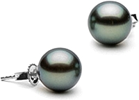 Pair of 8.0-9-0mm Tahitian Pearl Stud Earrings